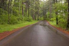 Road Through Woods Stock Photos