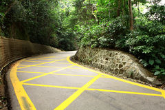 Road with yellow lines Royalty Free Stock Photography