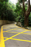 Road with yellow lines Stock Photography