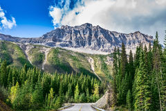 The road in Yoho National Park in Canada. The picturesque road in Yoho National Park. Rocky Mountains of Canada Royalty Free Stock Image