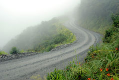 Road in Yungas, Bolivia Royalty Free Stock Photography