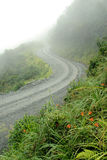 Road in Yungas, Bolivia Royalty Free Stock Photos