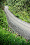 Road in Yungas, Bolivia Royalty Free Stock Images