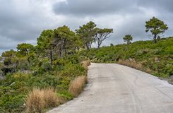 Road through the Zante Island. Narrow paved road leading towards the coast and shore on Zante Island, Greece stock image