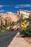 The road in Zion Canyon Royalty Free Stock Image