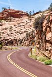 Road in Zion Royalty Free Stock Photography