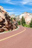 Road in Zion Royalty Free Stock Image