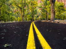 Road in Zion National Park, Utah Royalty Free Stock Photo