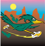 Roadrunner Stock Image