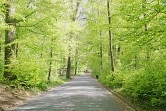 Roads of a beautifull Swiss park Stock Photo