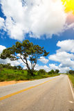 Roads Brazil Royalty Free Stock Images