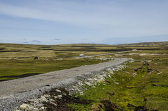 THE ROADS IN FALKLAND ISLANDS Stock Photography