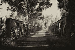 Roads forgotten. Man abandoned road bridge to build better alternatives Royalty Free Stock Images