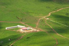 Roads in grassland Stock Photography