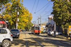 Roads in Krasnodar Royalty Free Stock Images