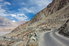 Roads of Ladakh, India. Mountain road in Himalayas royalty free stock photo