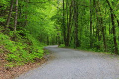 Roads. A mountain road in summer Stock Photos