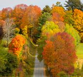 Roads are often bordered by vibrant color as the leaves change i stock photos