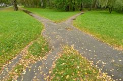 The roads in the Park intersect . They are covered with yellow leaves Royalty Free Stock Photo