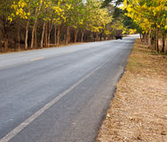 Roads in rural areas. Royalty Free Stock Photo