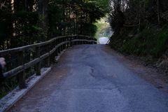 Roads in the spring woods. Scenic roads in the middle of Italian woods in spring Stock Images