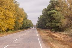 Direct highway in the autumn forest with trucks. Roads, straight roads, trucks moving cargo stock images