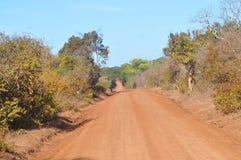 Roads - Yala Wildlife Santuary Royalty Free Stock Photography