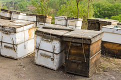 Roadside beehive Royalty Free Stock Image