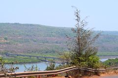 Roadside Casuarina tree with Bridge over River and Hills - Landscape in Konkan Region, Inida... Stock Image
