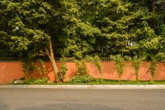 Roadside Chinese aged enclosure in woods of sunny autumn Stock Photo