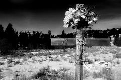 Roadside cross bw. Cross by the roadside, sad indication of a fatal accident. image converted to monochrome with added grain, darkened background Royalty Free Stock Photo