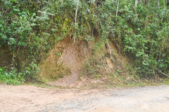 Roadside erosion. Erosion on the side of a dirt road in Petropolis, Brazil, as the result of deforestation and poor planning stock photos