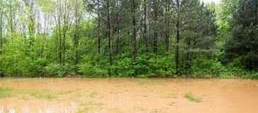 Roadside Flooding. Flooding from Spring Rains in a Green Public Park Area royalty free stock photo