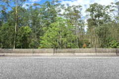 Roadside and forest Stock Photography