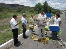 Roadside Fruit Stand in Mexico Stock Photos