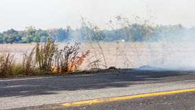 Roadside grass fires. Royalty Free Stock Photo