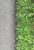 Roadside with grass, top view, closeup. Roadside with grass, top view and closeup Stock Photography