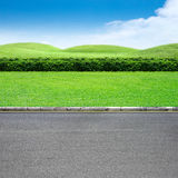 Roadside and grass Royalty Free Stock Photos