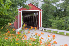Roadside Lilies and Covered Bridge Royalty Free Stock Photography