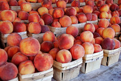 Fresh peaches in wood boxes Royalty Free Stock Images