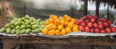 Roadside marketplace in north of Thailand Stock Image