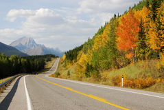 Roadside mountains and forests Royalty Free Stock Photo