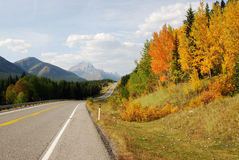 Roadside mountains and forests. Autumn scenic view of rocky mountains, forests and road (highway 40) while traveling in kananaskis country, alberta, canada Stock Photos