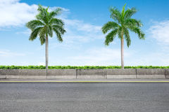Roadside and palm trees Royalty Free Stock Images