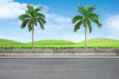 Roadside and palm trees Stock Photography