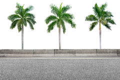 Roadside and palm trees on white Royalty Free Stock Images
