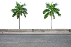 Roadside and palm trees on white Stock Photography
