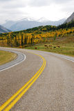 Roadside pasture Royalty Free Stock Images