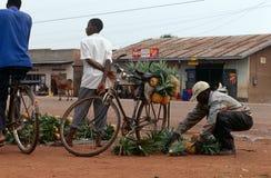 A roadside pineapple stall, Uganda. Stock Photos