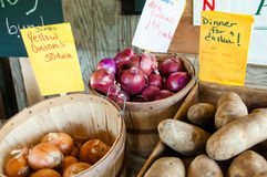 Roadside Produce Stand. Close up of baskets of red and yellow onions and crate of potatoes with hand written signs identifying produce and price at a roadside Royalty Free Stock Image